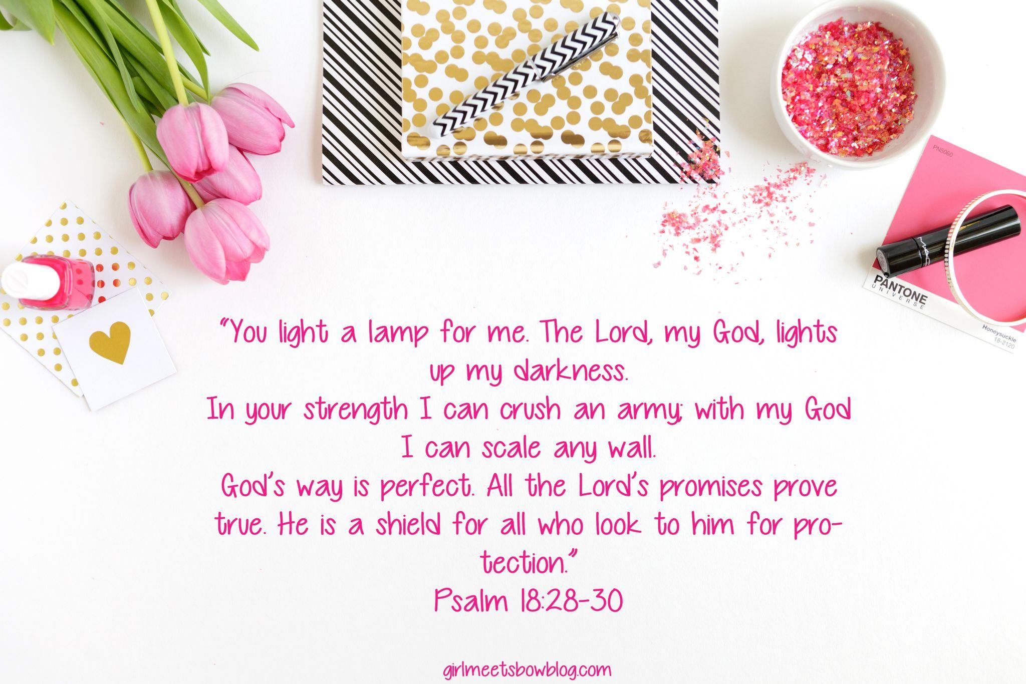 Psalm 18:28-30