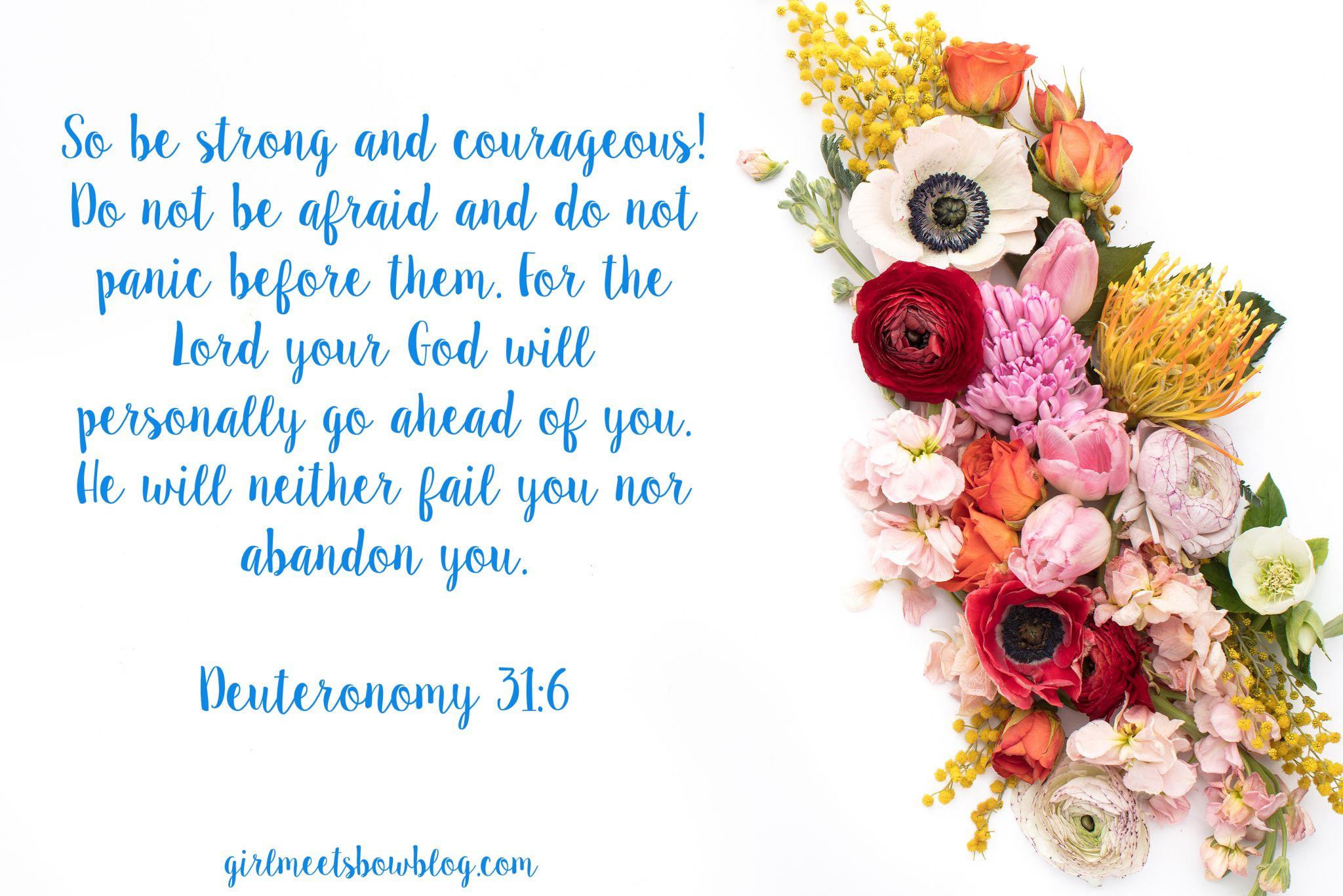 Sunday Scripture vol. 8