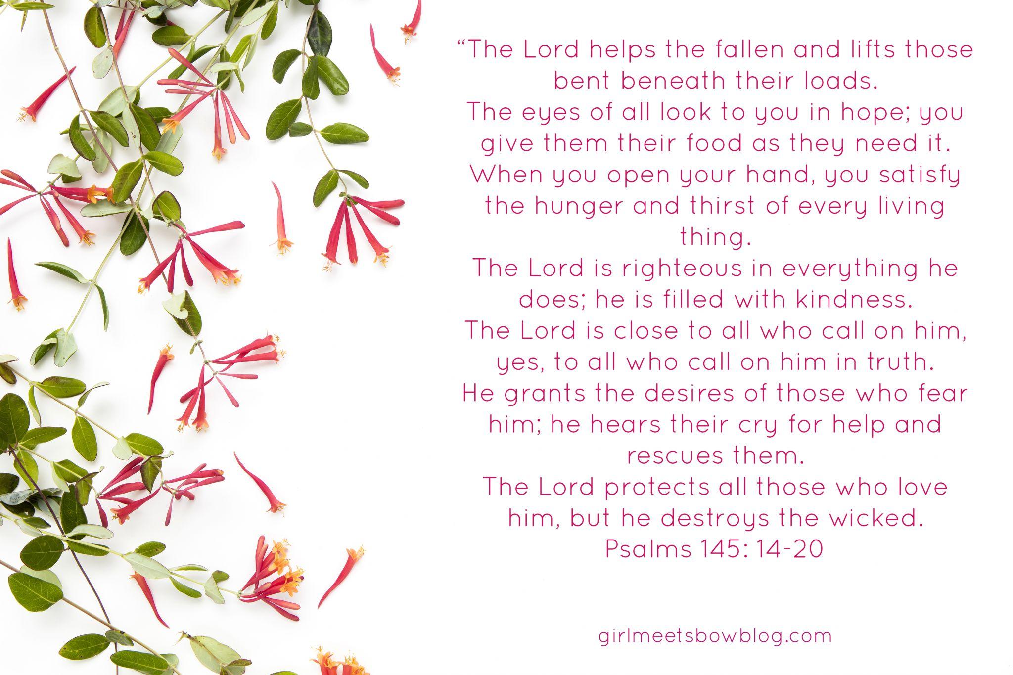 Sunday Scripture vol. 10